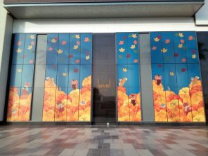 Level Kids window graphics Dubai by Sign Works